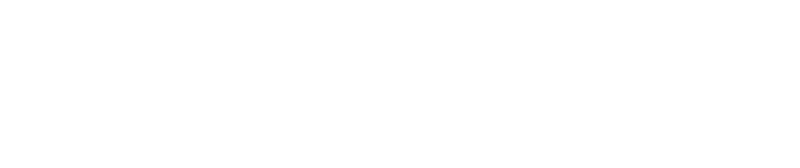 Audit Assistant - Taking audit efficiency to the next level